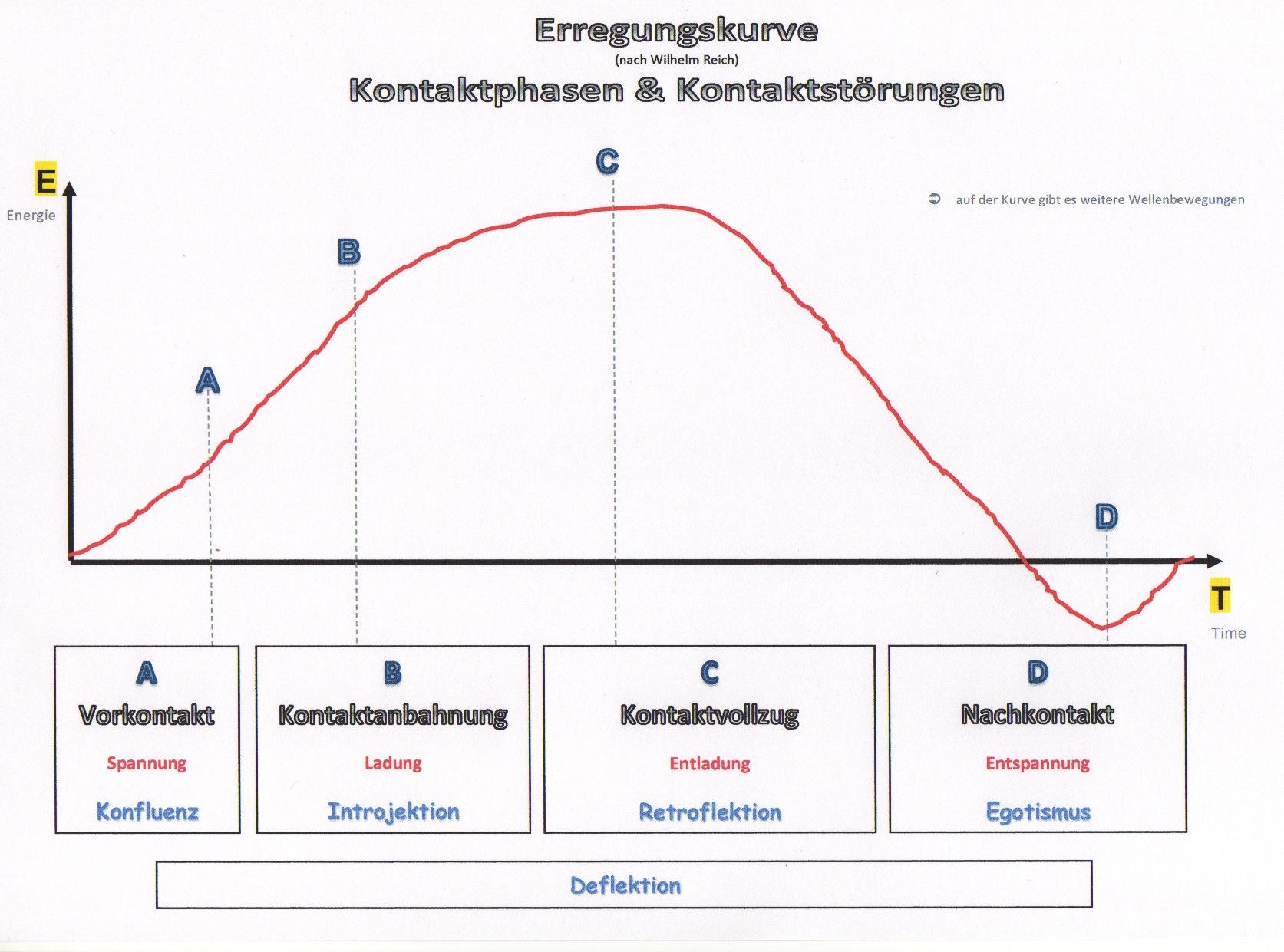 Erregungskurve nach W. Reich Kontaktphasen & Kontaktstörungen